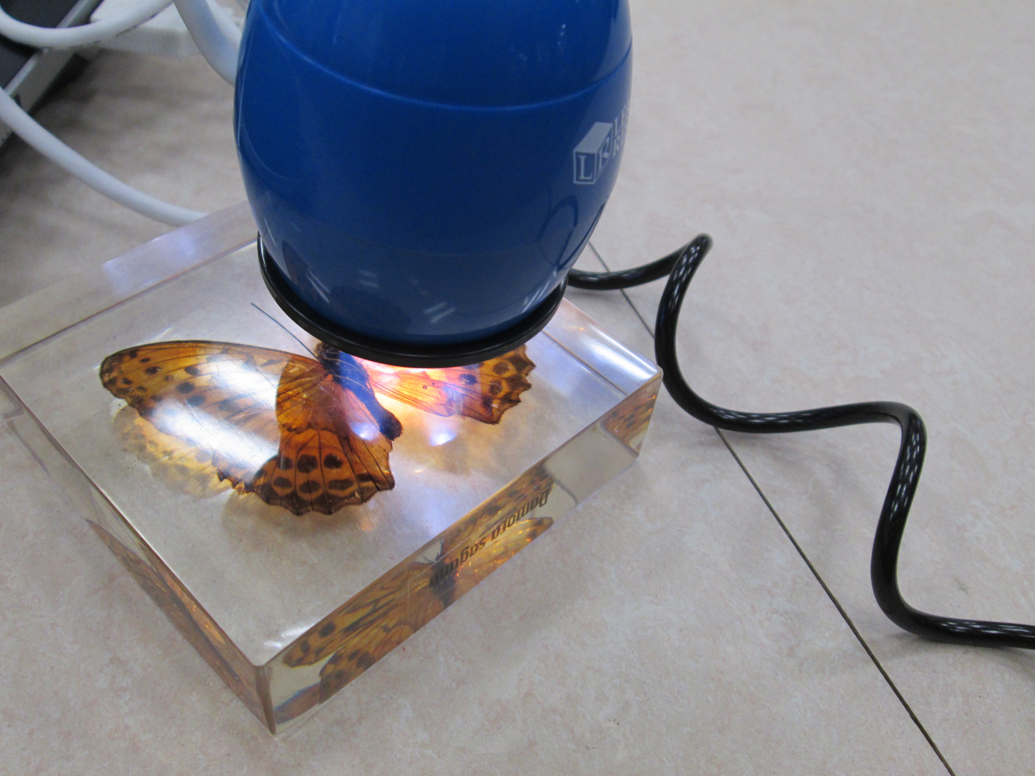mejor-microscopio-digital-portátil