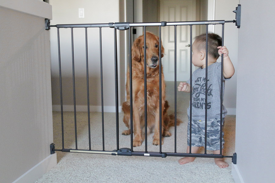 mejor-barrera-de-seguridad