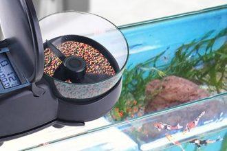 mejor-alimentador automático-de-peces