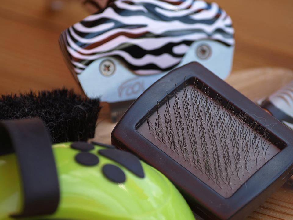 mejor-cepillo-para-mascotas