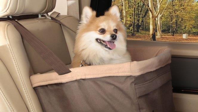 mejor-asiento-elevador-para-mascotas
