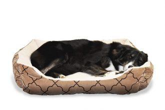 mejor-cama-ortopédica-para-perros
