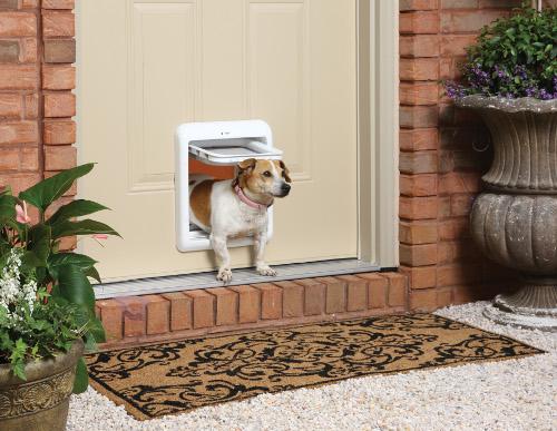 mejor-puerta-para-mascotas