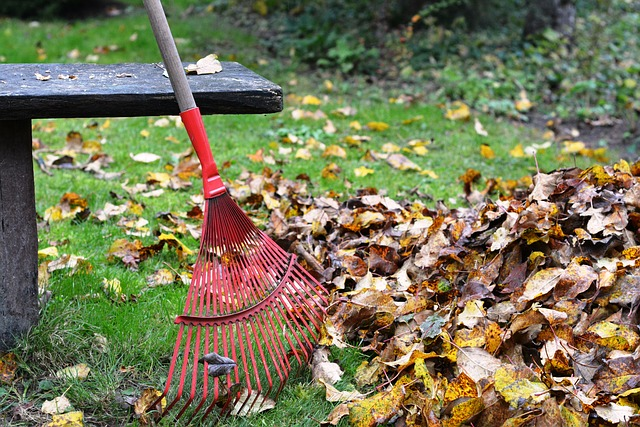 mejor-rastrillo-para-jardín