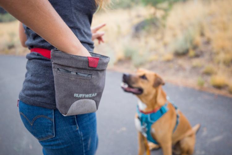 mejor-bolsa-de-premios-para-perros
