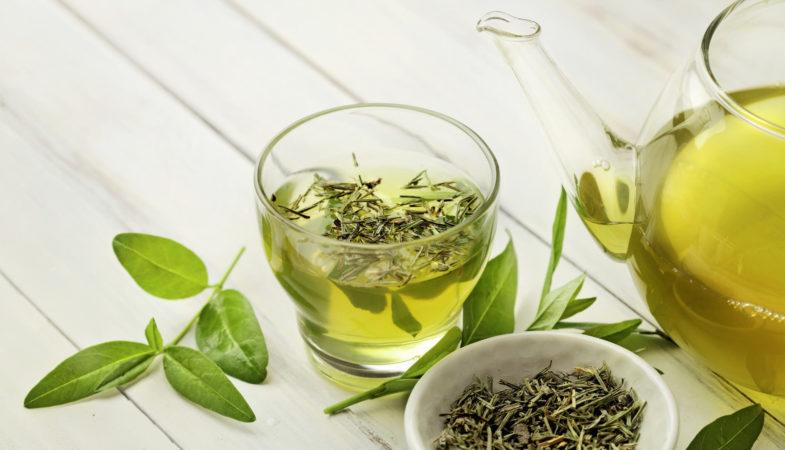 los-mejores-tés-verde