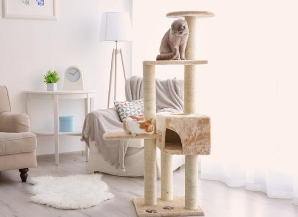 mejor-árbol-rascador-para-gatos