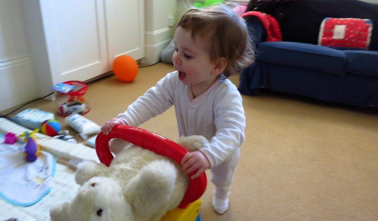 8d310afc7 Los 5 Mejores Andadores para Bebés, la Herramienta Ideal para Acompañar Sus  Primero Pasos.