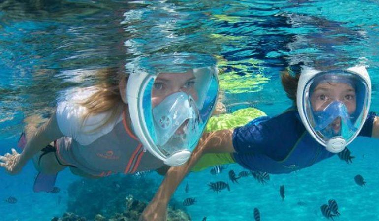 13be9210b Las 5 Mejores Máscaras de Buceo para Explorar el Impresionante Mundo  Submarino