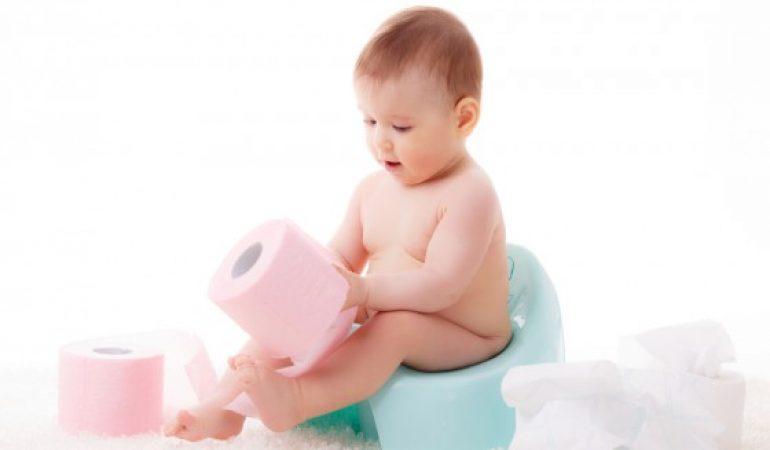 Reer 4411.2 Orinal Infantil Con Tapa Color Rosa