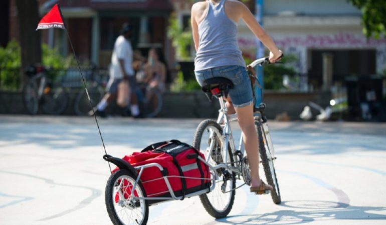 Los 6 Mejores Remolques de Bicicleta Baratos 2018: Ofertas y Opiniones